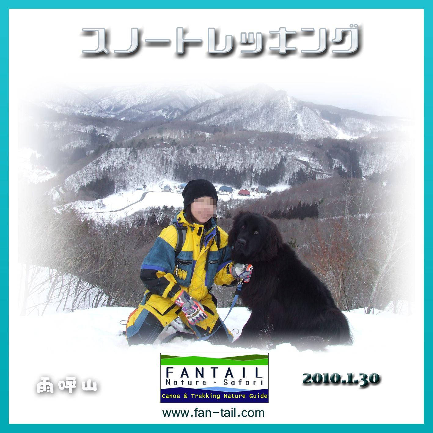 2010130_snowdog_satousan